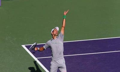 Novak Djokovic, Miami 2014 (foto Art Seitz)