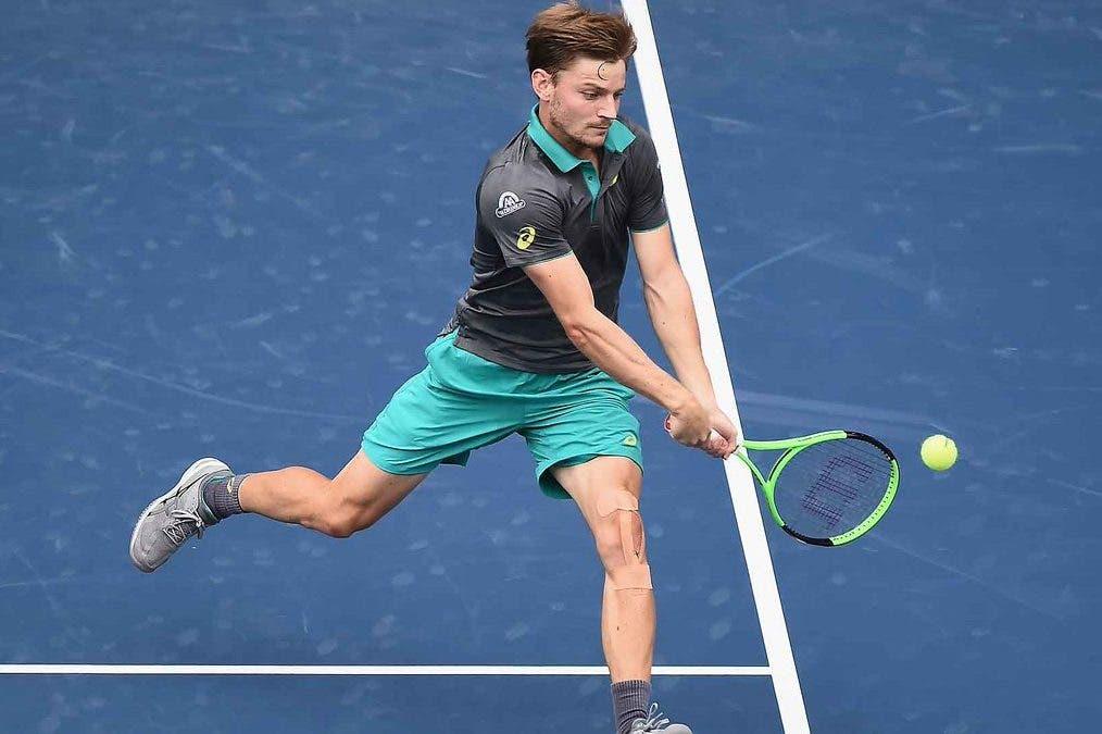 ATP Tokyo: comode vittorie per Dolgopolov e Goffin. Avanza Cilic