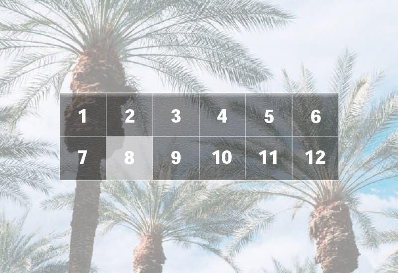 Indian Wells, il programma del day 8: Federer alle 23, del Potro a seguire