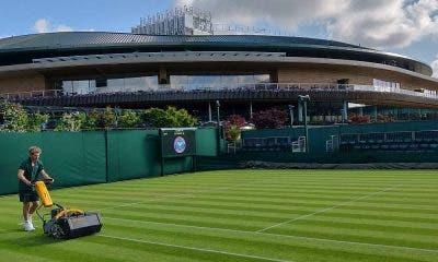 Il campo n.14 di Wimbledon